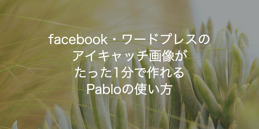 pablo (4)